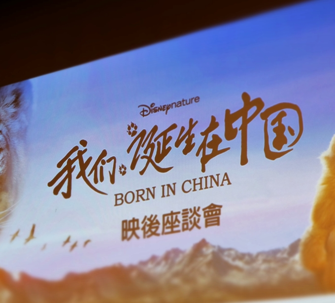 Renowned director in China shares filming of his famous piece Born in China