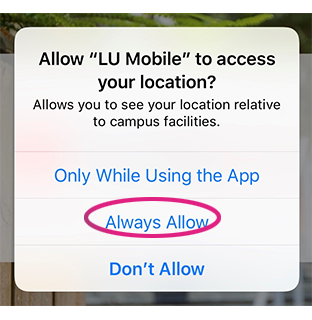 LU Mobile location allow